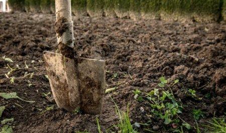 Перекапывание огорода осенью
